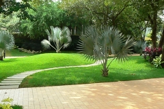 home_garden_design_ideas_india1039682061